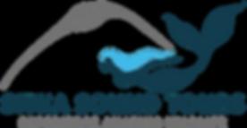 Final Blue Hair Logo.png
