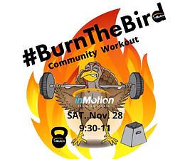 Burn the bird logo (1).png