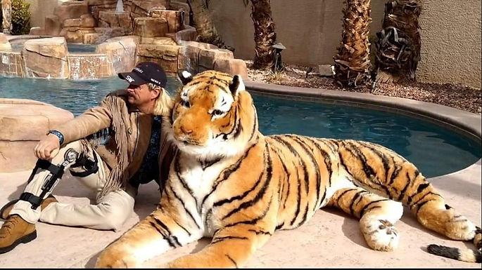 tiger pool.jpg
