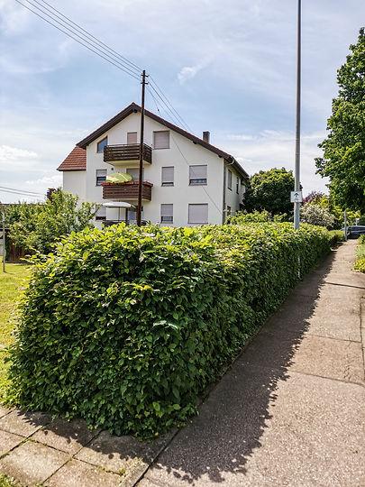 heckweg-140749.jpg