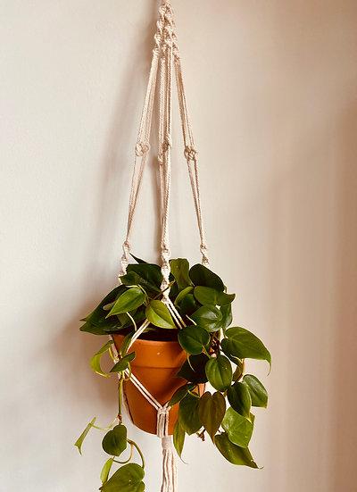 """40"""" Macrame Plant Hanger"""