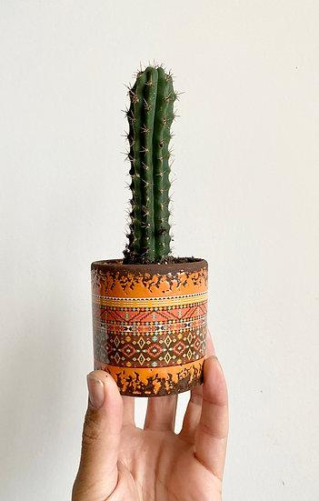 Rust Mediterranean Pot w/ Cactus