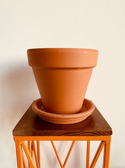 "6"" Terracotta Pot with Saucer"