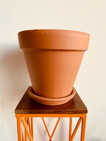 "8"" Terracotta Pot with Saucer"