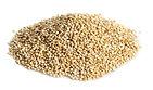 Quinoa - Maison Bio Sain