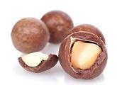 Noix de macadamia - Maison Bio Sain