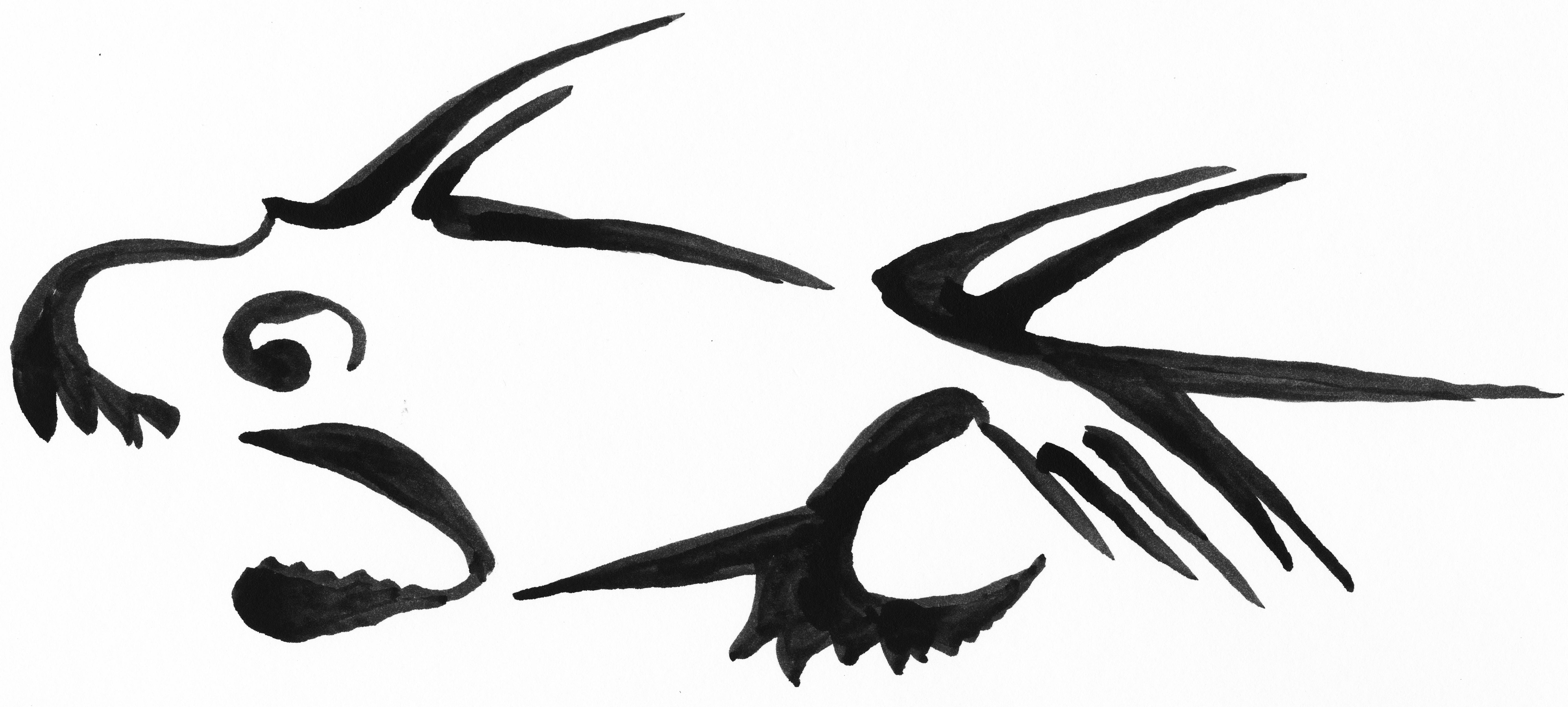 pcs-piranha