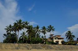 Sri Lanka 024.jpg