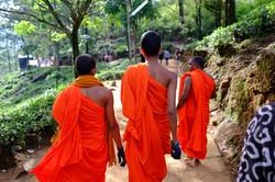 Sri Lanka 042.jpg