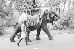 Sri Lanka 014.jpg