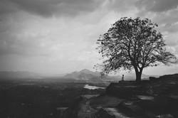 Sri Lanka 013.jpg