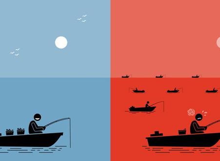Principios de la Estrategia del Océano Azul.