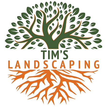 tims logo 300px.png