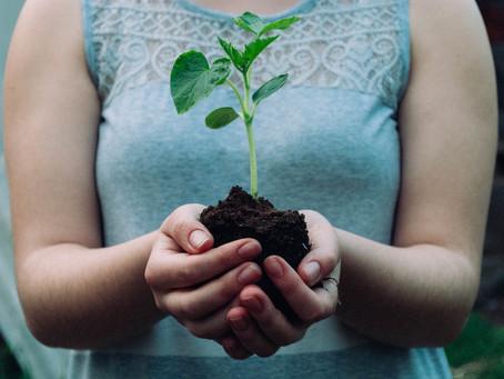 Não existe mais inovação sem sustentabilidade!