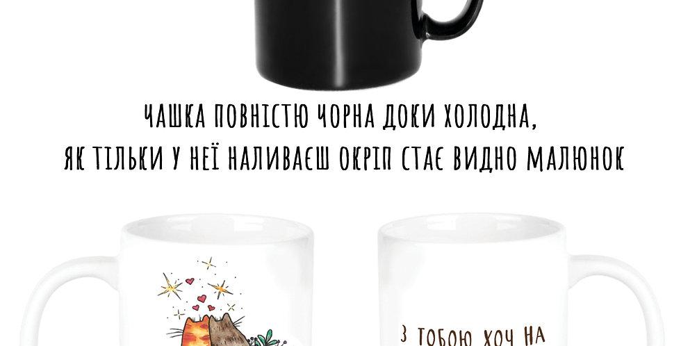 Magic cup Котики