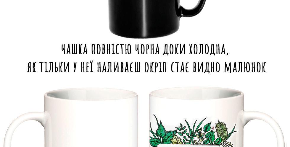 Magic cup моя весна