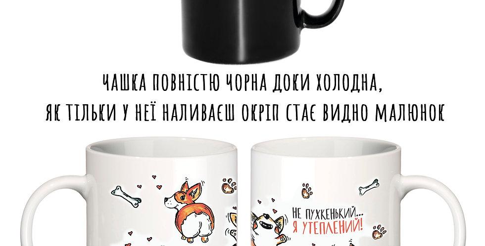Magic cup коргі