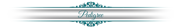 pedigree-decorative-bar.png