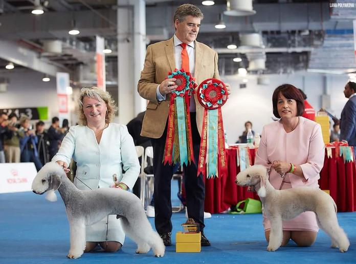 Matvey and Melody World Winners.jpg