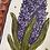 Thumbnail: Tray with a Hyacinth