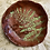 Thumbnail: Ring Dish with Fern