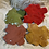 Thumbnail: Ornament, Red Maple
