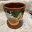Thumbnail: Mug with Papaya