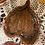 Thumbnail: Tray with Leaf  Imprint