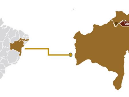 A PRODUÇÃO DE VINHOS DO BRASIL - PARTE 6 - VALE DO SÃO FRANCISCO