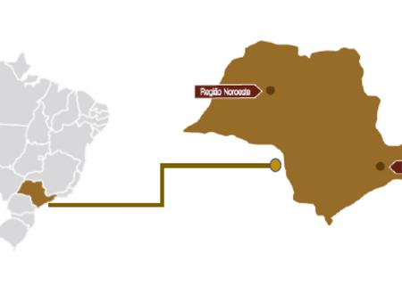 A PRODUÇÃO DE VINHOS DO BRASIL -  PARTE 3 - SÃO PAULO