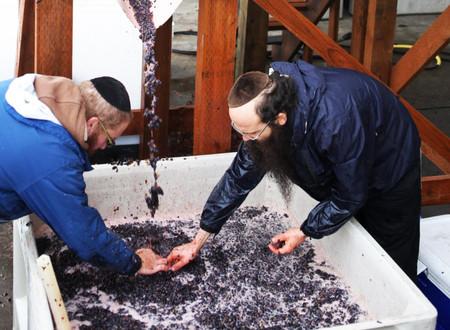 O que é Vinho Kosher ?