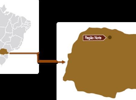 A PRODUÇÃO DE VINHOS DO BRASIL - PARTE 8 - PARANÁ