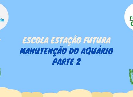 Peixe Betta-MANUTENÇÃO SEMANAL