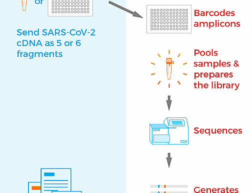SARS-CoV-2 Long-read Sequencing Tool
