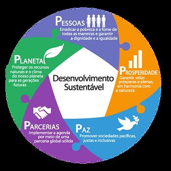Infografico_cinco_elementos_PORTUGUESE t