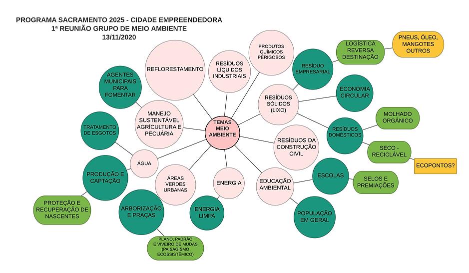 Mapa Mental Reuniao Meio Ambiente - 13no