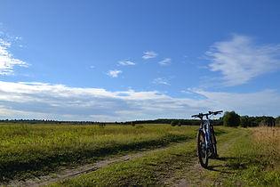 bike-1569404_1920.jpg