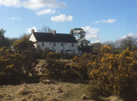 One Old Devon Holiday Cottage In Dartmoor National Park Meets One Young Family. The Start