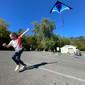 Wind & Kites