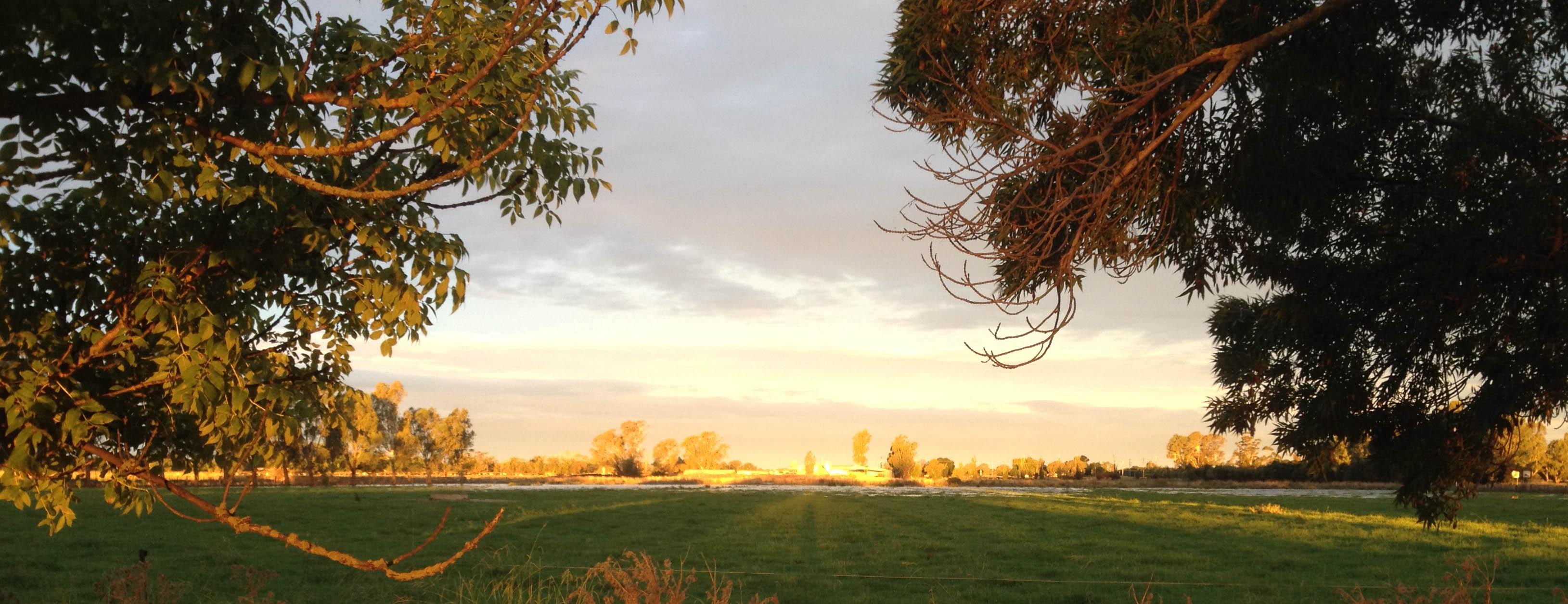 KVDG Farm Landscape