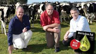 Kyabram Brothers lead the way on export