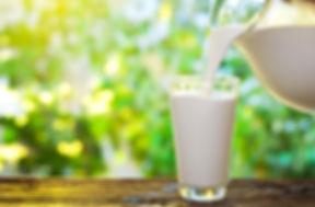 natural-force-blog-hero-a1-vs-a2-milk-13