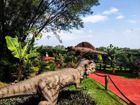 Complexo Dreams Park Show reduz horário de atendimento e capacidade de público