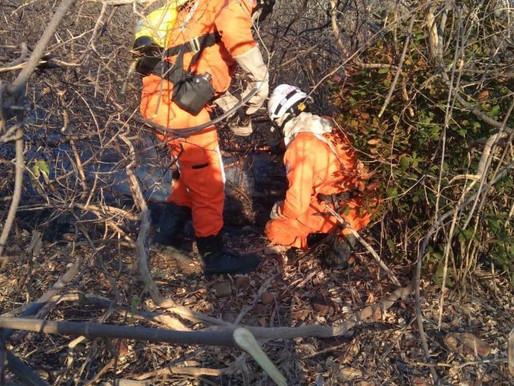 Operação Guardiões do Bioma combate 5,5 mil incêndios em agosto