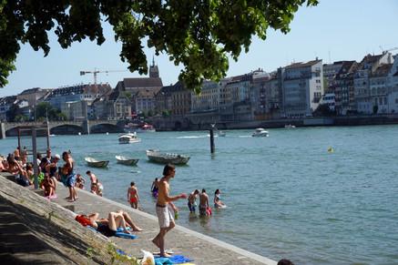 Basel Swimmers, June 2014