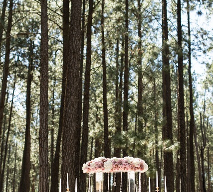 Styled Shoot | Forest Glam