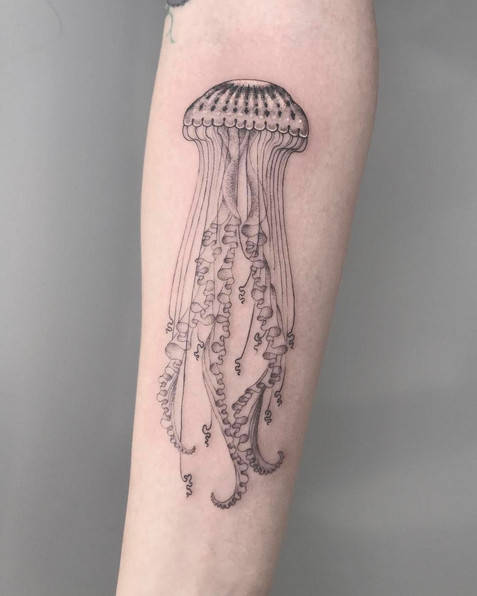 SCOTT CAMPBELL | Brooklyn | Saved Tattoo