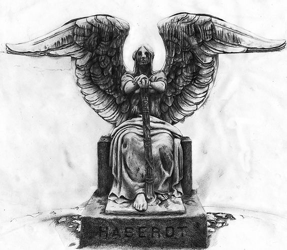 Haserot's Angel illustration