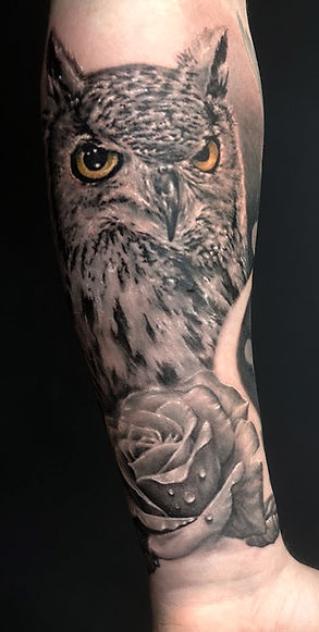 owl and rose, work in progress (still a little more to do)