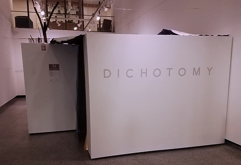 Welcome to Dichotomy